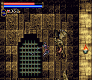Play Castlevania Online