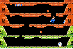 Play Classic NES Series – Ice Climber Online