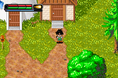 Play Dragon Ball Z – The Legacy of Goku II Online