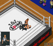 Play Final Fire Pro Wrestling (english translation) Online