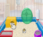 Play Hamster Club 3 Online