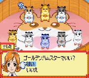 Play Hamster Paradise – Pure Heart Online