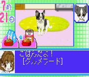 Play Koinu to Issho 2 Online