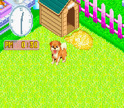 Play Nakayoshi Pet Advance Series 2 – Kawaii Koinu Online
