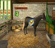 Play Paard & Pony – Paard in Galop Online