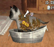 Play Paws & Claws – Best Friends – Dogs & Cats Online