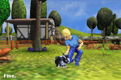 Play Paws & Claws – Pet Resort Online