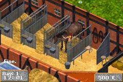 Play Pferd & Pony – Mein Gestuet Online