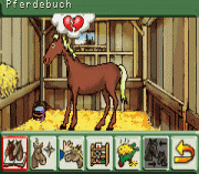 Play Pferd & Pony 2 in 1 Online