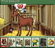 Play Pferd & Pony 2 in 1 Online