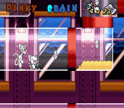 Play Pinky and the Brain – The Masterplan Online