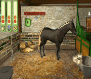 Play Pippa Funnell 2 Online