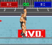Play Shin Nihon Pro Wrestling – Toukon Retsuden Advance Online