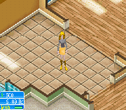 Play The Sims 2 – Pets Online