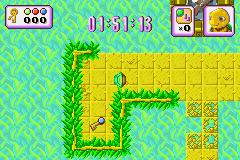 Play Turbo Turtle Adventure Online