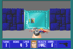 Play Wolfenstein 3D Online